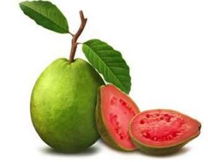 Thinning hair and guava