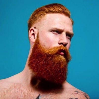 beard colors